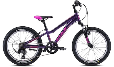 FUJI Bikes Mountainbike »Fuji Dynamite 20 2021«, 6 Gang, Shimano, Tourney Schaltwerk, Kettenschaltung kaufen