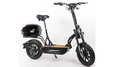 "Forca E-Scooter »Elektroroller ""Eco-Tourer"" 20 km/h Safety Plus«, 20 km/h, 45 km kaufen"