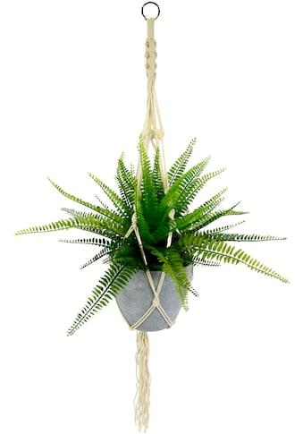 I.GE.A. Künstliche Zimmerpflanze »Farnbusch« (1 Stück) kaufen