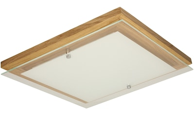 SPOT Light,LED Deckenleuchte»FINN«, kaufen