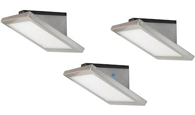 EVOTEC,LED Unterbauleuchte»NELLY«, kaufen