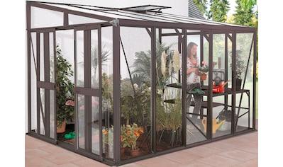 VITAVIA Anlehngewächshaus »Helena 11900«, BxTxH: 470 x 268 x 239 cm, in 2 Farben kaufen