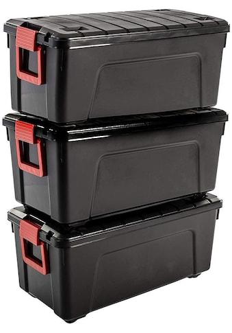 IRIS OHYAMA Aufbewahrungsbox »SIA75« (Set, 3 Stück) kaufen