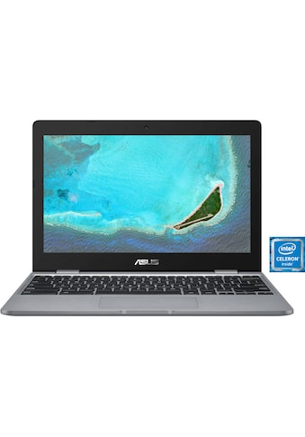 Asus Notebook »C223NA-GJ0068«, ( ) kaufen