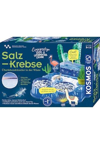 Kosmos Experimentierkasten »Salzkrebse«, Made in Germany kaufen