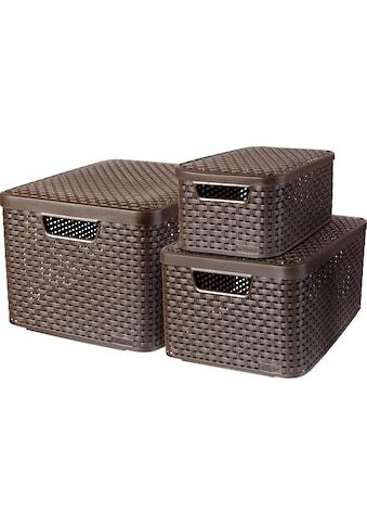 Curver Aufbewahrungsbox »Style Box L+M+S«, (Set, 3 St.), dunkelbraun kaufen