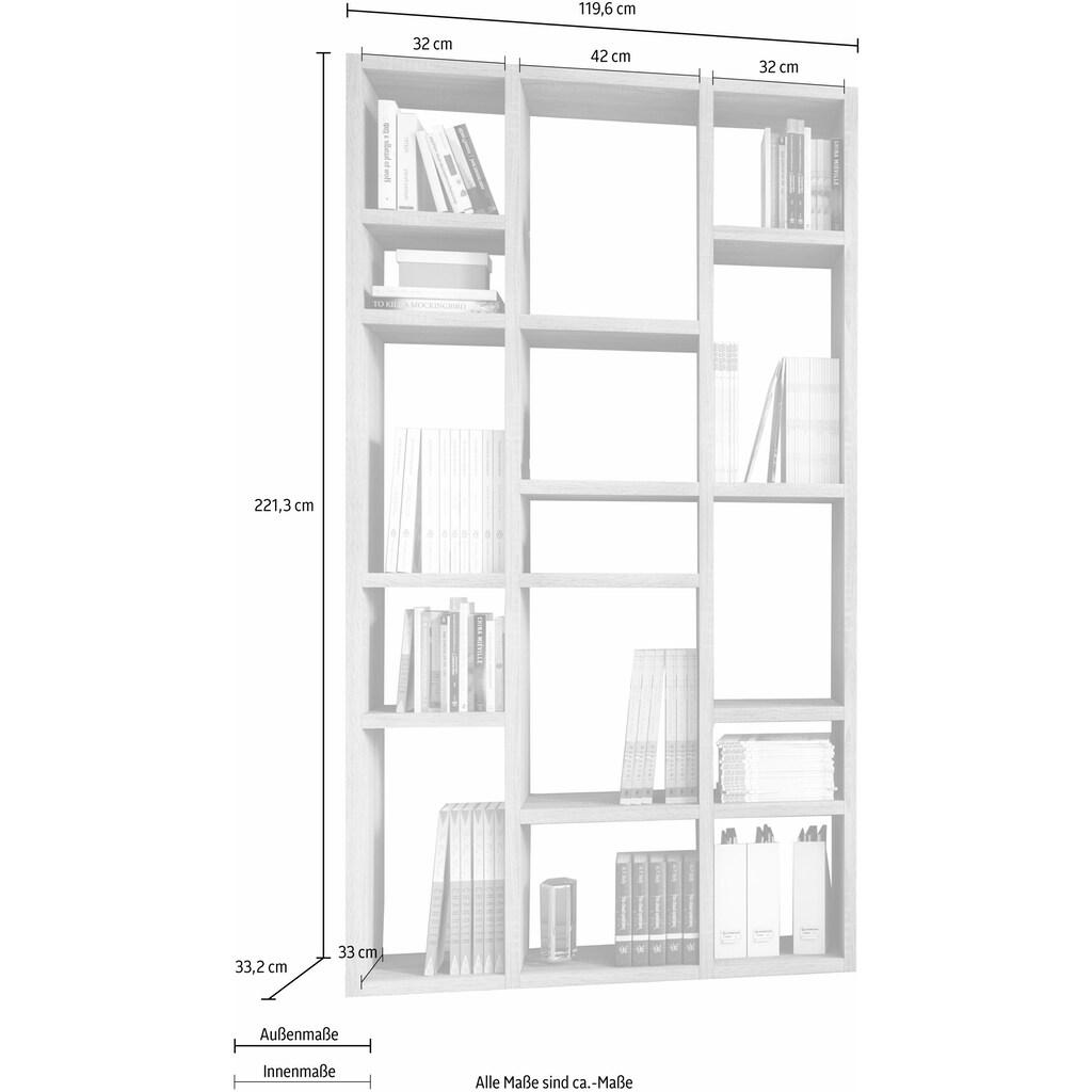 fif möbel Raumteilerregal »TORO 384«, Breite 120 cm