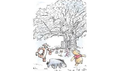 KOMAR XXL Poster »Winnie Pooh Playground« kaufen