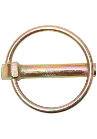 RAMSES Klappstecker , mit Schaft 8 x 42 mm Stahl verzinkt 10 Stück kaufen