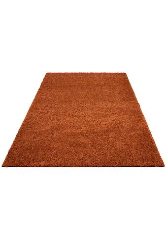 Bruno Banani Hochflor-Teppich »Shaggy Soft«, rechteckig, 30 mm Höhe, gewebt, Wohnzimmer kaufen