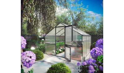 KGT Gewächshaus »Orchidee III«, BxTxH: 297x323x233 cm, anthrazit, inkl. Regenrinne kaufen