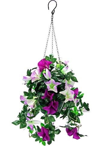 I.GE.A. Kunstpflanze »Hängeampel Petunien« (1 Stück) kaufen