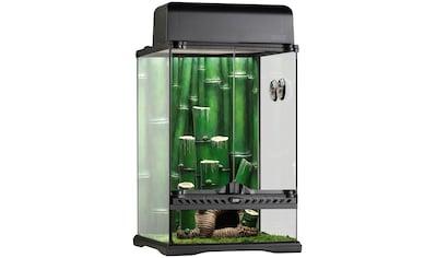 Exo Terra Terrarium »Bamboo Forest Kit«, BxTxH: 30x30x45 cm kaufen