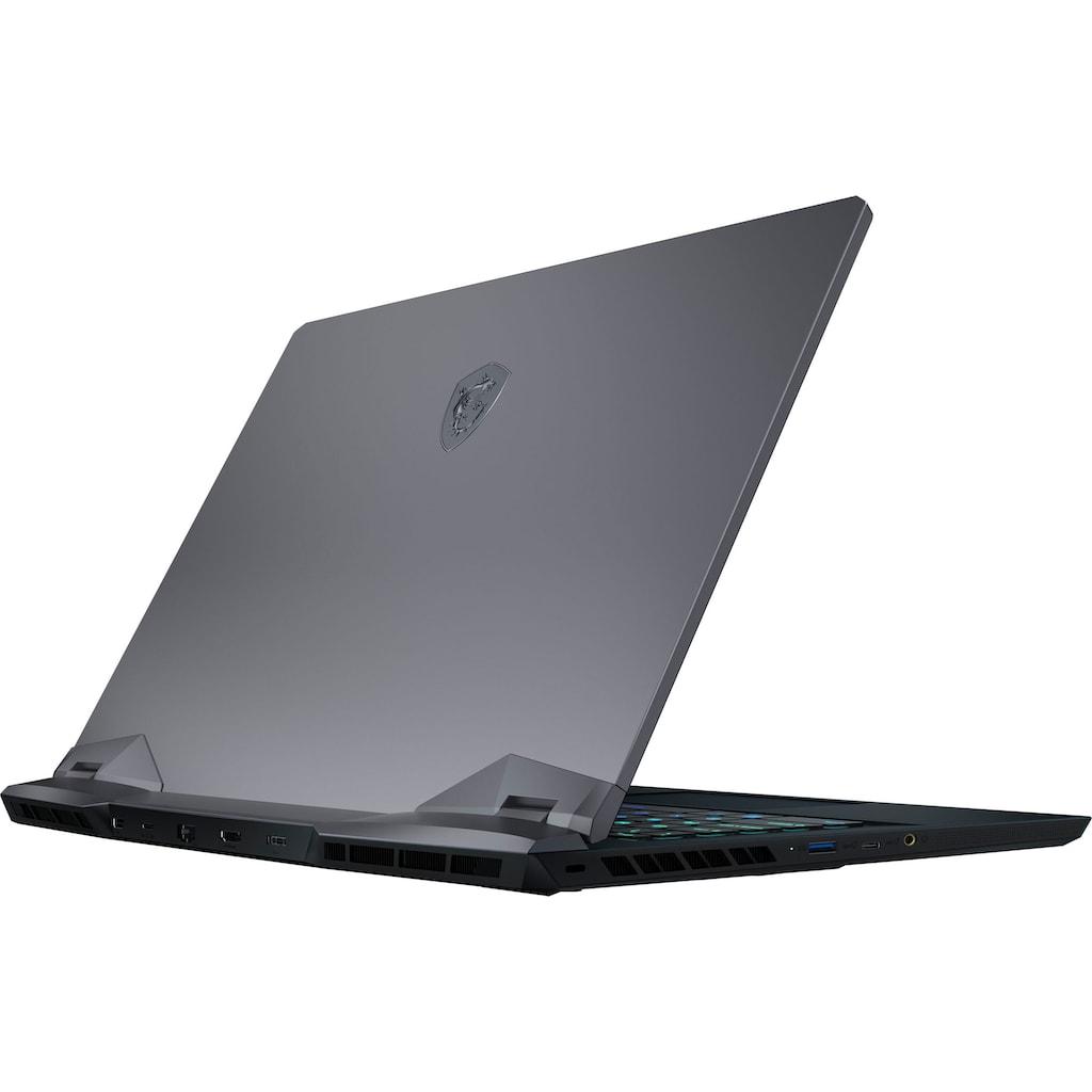 MSI Gaming-Notebook »GE66 Raider 10UG-261«, ( 1000 GB SSD)