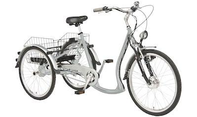 Wild Eagle E - Bike 7 Gang Shimano NEXUS Schaltwerk, Nabenschaltung, Frontmotor 250 W kaufen