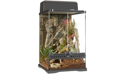 Exo Terra Terrarium »Aztec«, BxTxH: 30x30x45 cm kaufen