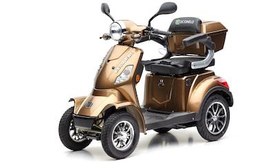 ECONELO Elektromobil »JL 4000«, 1000 W, 25 km/h, (mit Topcase) kaufen
