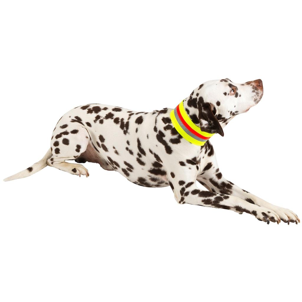 HEIM Hunde-Halsband »Signalhalsband«, Textil