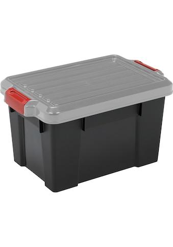 IRIS OHYAMA Aufbewahrungsbox »SK700« (Set, 3 Stück) kaufen