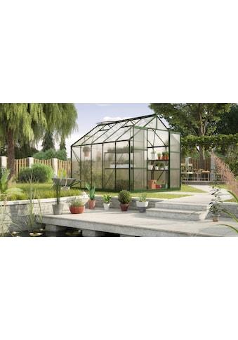 KONIFERA Gewächshaus »Titania 8300«, (Set) kaufen
