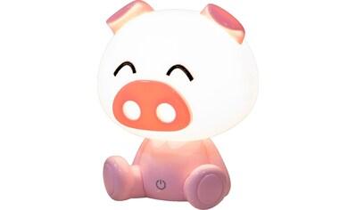 Nino Leuchten,LED Tischleuchte»Pig«, kaufen