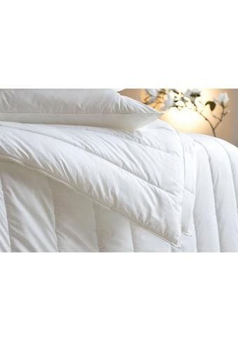 Kunstfaserbettdecke, »Vital Plus«, Centa - Star, warm, Bezug: 100% Baumwolle kaufen