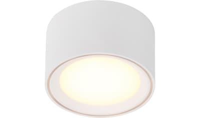 Nordlux LED Deckenspot »Fallon«, LED-Board, Warmweiß, LED Deckenleuchte, LED Deckenlampe kaufen