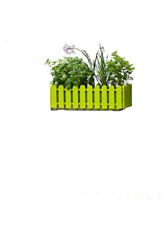 Emsa Blumenkasten »LANDHAUS«, (2 St.), BxTxH: 50x20x16 cm kaufen