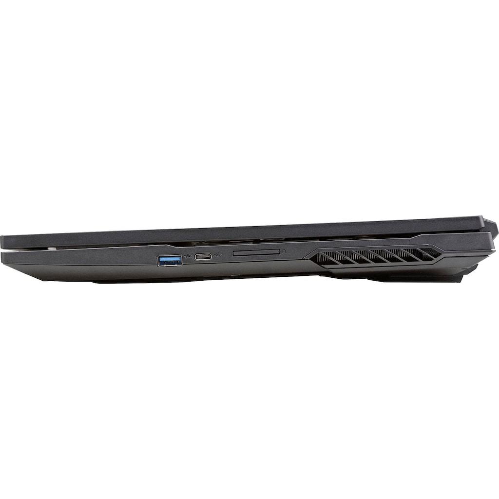 "CAPTIVA Gaming-Notebook »I60-257«, (43,94 cm/17,3 "" Intel Core i7 GeForce RTX 3060\r\n 1000 GB SSD), Kostenloses Upgrade auf Windows 11, sobald verfügbar"