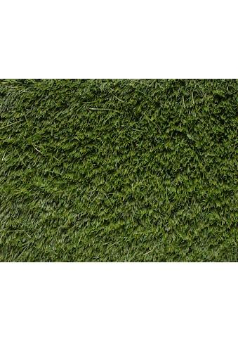 Andiamo Kunstrasen »La Palma«, rechteckig, 33 mm Höhe, Meterware Breite 200 cm, uni,... kaufen