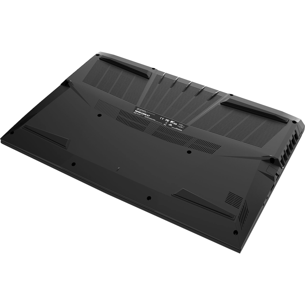 "XMG Notebook »CORE 17 - E20«, (43,94 cm/17,3 "" Intel Core i7 GeForce GTX 1650 Ti\r\n 1000 GB SSD), Kostenloses Upgrade auf Windows 11, sobald verfügbar"