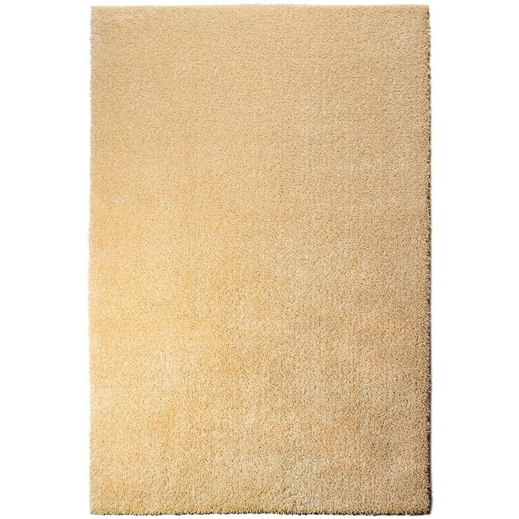 andas Hochflor-Teppich »Lonela«, rechteckig, 30 mm Höhe, besonders weich duch Microfaser