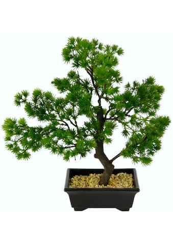 I.GE.A. Kunstbonsai »Bonsai« (1 Stück) kaufen