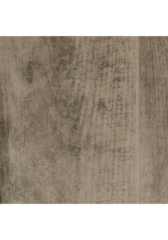 Bodenmeister Vinylboden »PVC Bodenbelag Eiche hell«, Meterware, Breite 200/300/400 cm kaufen