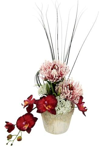 I.GE.A. Kunstpflanze »Orchidee« kaufen