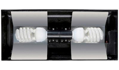 Exo Terra Terrarienleuchte »Compact Small PT2226«, BxTxH: 45x20x9 cm kaufen