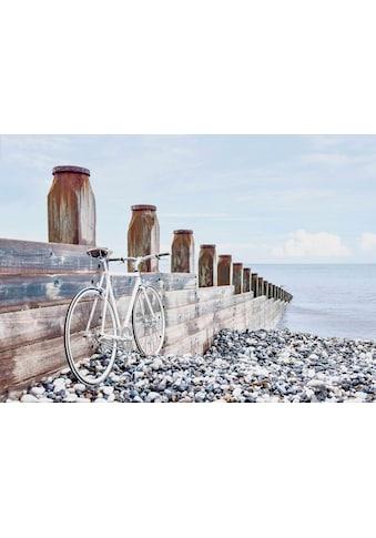Deco - Panel »Fahrrad am Strand« kaufen
