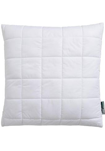 f.a.n. Schlafkomfort Kunstfaserkopfkissen »Greenfirst«, Bezug: 100% Baumwolle, (1 St.) kaufen