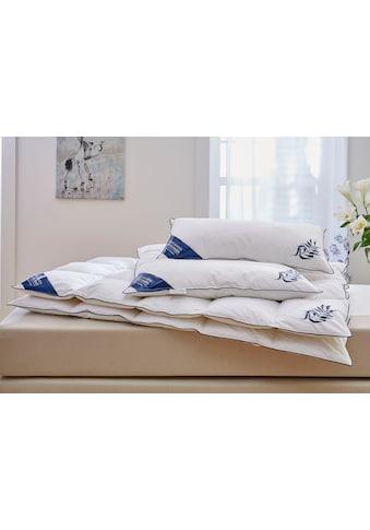 Daunenbettdecke + Kopfkissen, »Jasmin«, Guido Maria Kretschmer Home&Living, (Spar - Set) kaufen