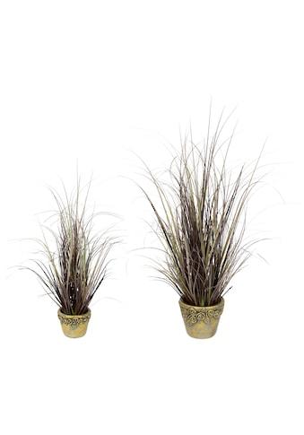 I.GE.A. Kunstgras »Gras mit Übertopf«, 2er Set kaufen