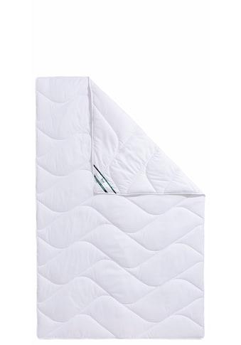 f.a.n. Schlafkomfort Kunstfaserbettdecke »Proneem«, leicht, (1 St.), mit Mikrofaser-Bezug kaufen