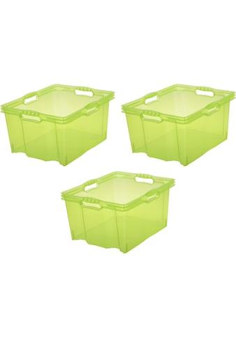 keeeper Aufbewahrungsbox »franz«, (Set, 3 St.), 24 Liter kaufen
