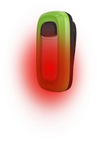 Energizer Klemmleuchte »Wearable Clip Light« kaufen