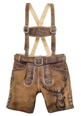 Country Line Trachtenlederhose, (3 tlg., mit Gürtel-mit Hosenträgern), Kinder mit... kaufen