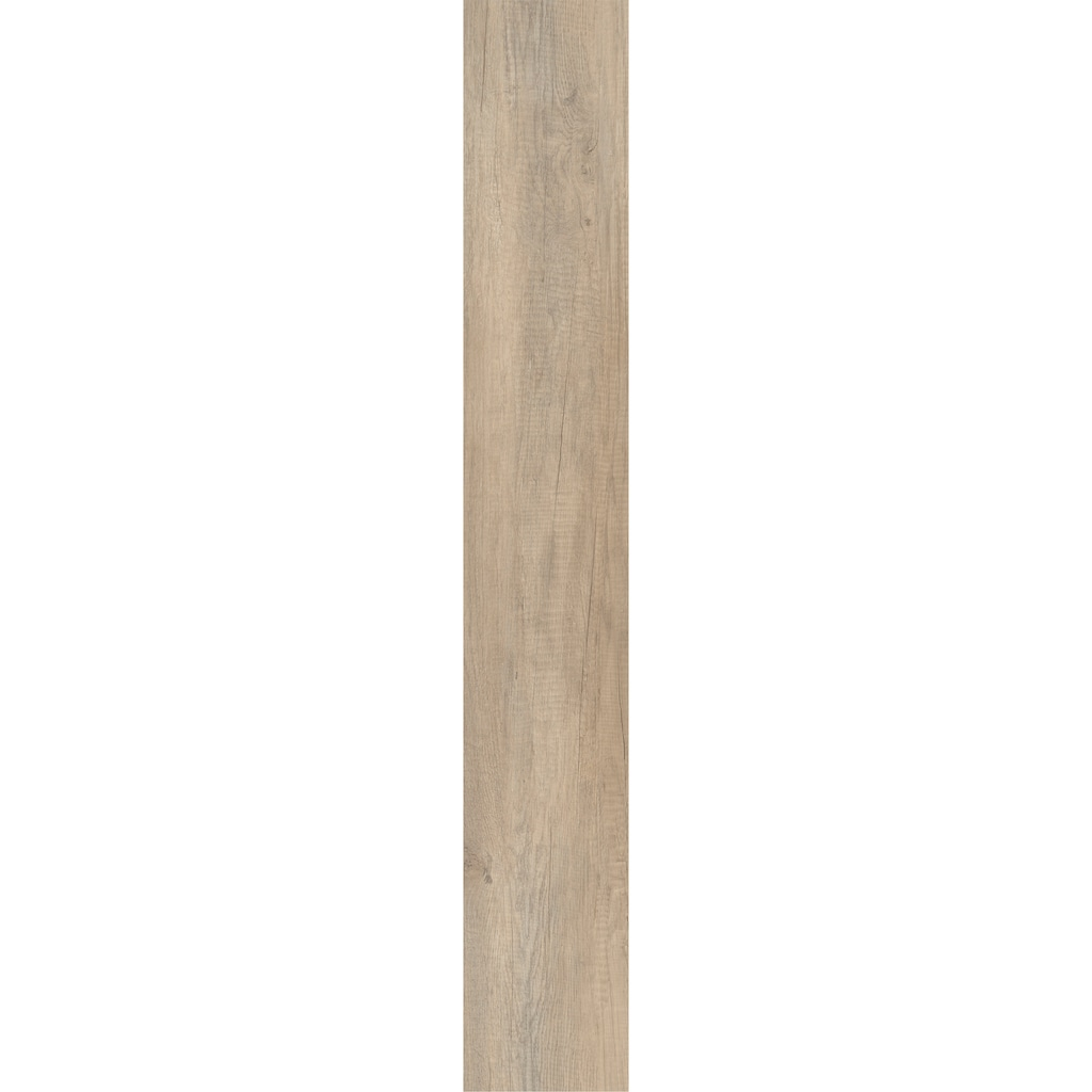 MODERNA Laminat »Lifestyle, Cosmopolitan Eiche«, pflegeleicht, 1288 x 198 mm, Stärke: 8 mm