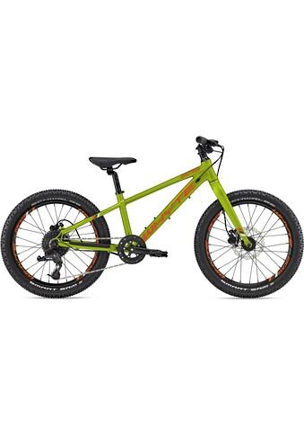 Whyte Bikes Kinderfahrrad »203V1«, 8 Gang SRAM X4 Schaltwerk, Kettenschaltung kaufen