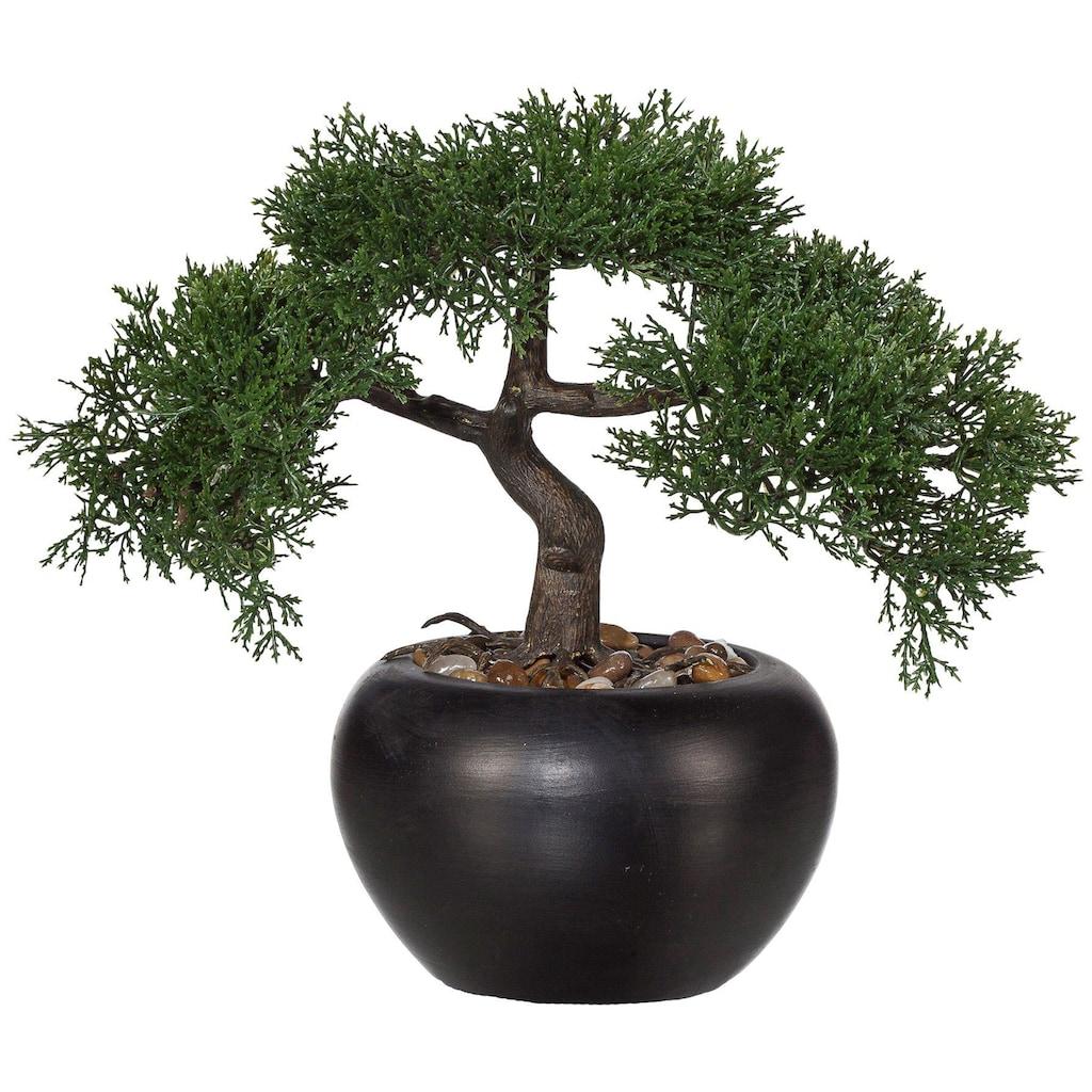 Creativ green Kunstbonsai »Bonsai Zeder« (1 Stück)