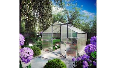 KGT Gewächshaus »Orchidee IV«, BxTxH: 297x429x233 cm, silber, inkl. Regenrinne kaufen
