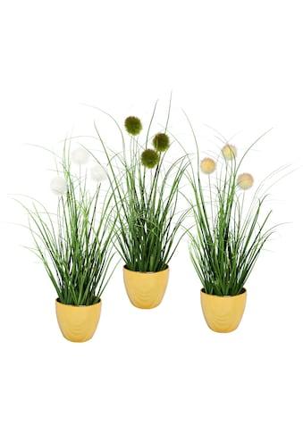 Leonique Kunstgras »Grasbusch mit Kletten«, 3er-Set kaufen
