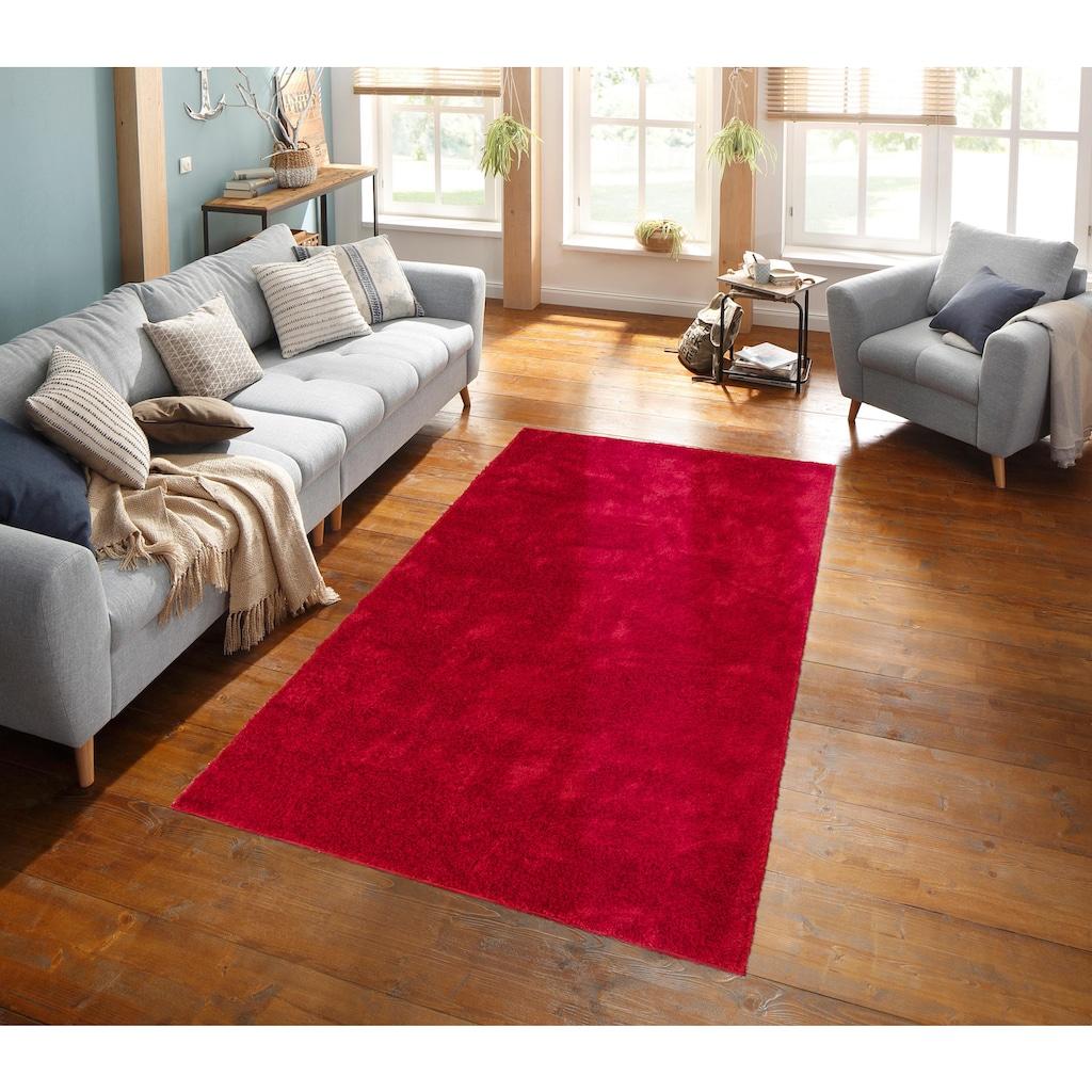 my home Hochflor-Teppich »Mikro Soft Ideal«, rechteckig, 30 mm Höhe, Besonders weich durch Microfaser, extra flauschig